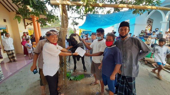 Kisah di Balik Anis Baswedan Sumbang Satu Ekor Sapi Limosin ke Warga Desa Kracak Ajibarang