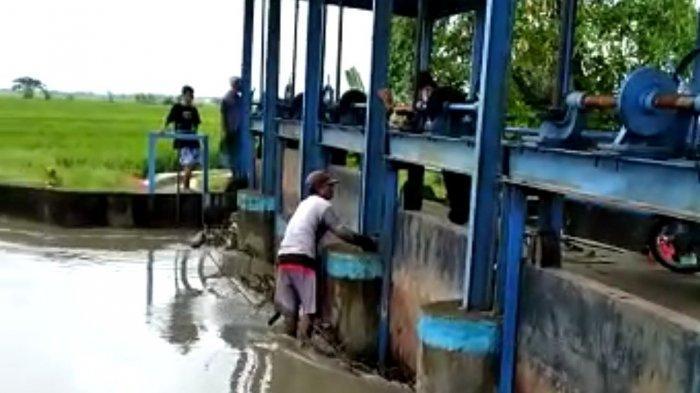 Hampir Separuh Wilayah di Desa Widodaren dan Pasucen Pemalang Terdampak Banjir
