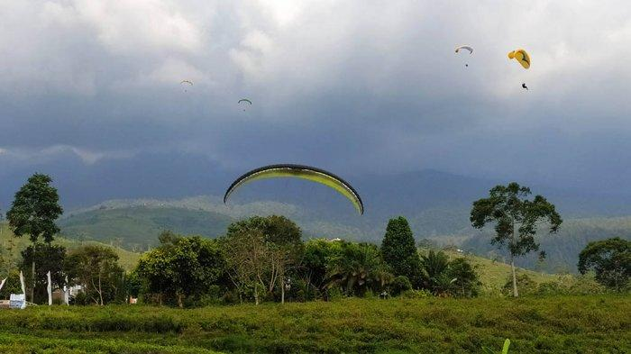Pemkab Karanganyar Undang 20 Pilot Amatir Paralayang di Kebun Teh Kemuning