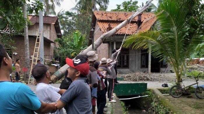 Korban RTH Pohon Tumbang Mestinya Berani Minta Ganti Rugi Pemerintah: Jangan Dianggap Bencana