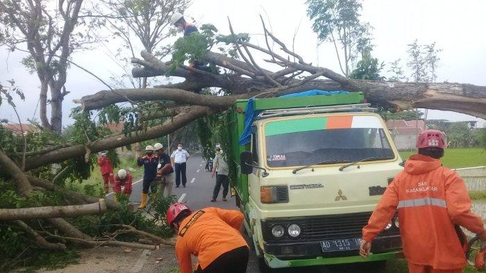 Truk Ketiban Pohon Tumbang di Lalung Karanganyar, Sopir Selamat: Angin Kencang