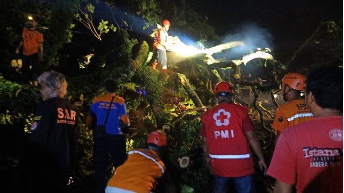 Akibat Pohon Tumbang, Arus Lalu Lintas di Pekalongan Macet 3 Kilometer