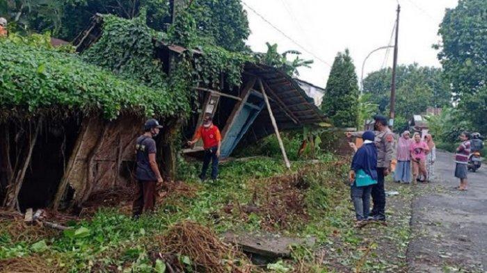 Diguyur Hujan Deras, Rumah Warga Kutasari Purbalingga Tertimpa Pohon Tumbang