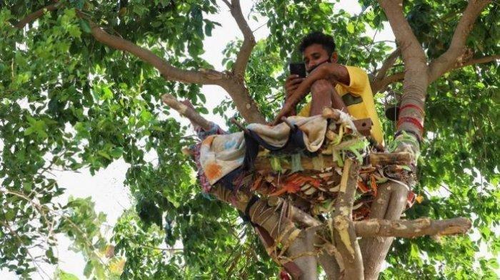 Hanya Ada di India: Lawan Corona dari Mandi Kotoran Hewan, Potong Lidah hingga Isolasi di Atas Pohon