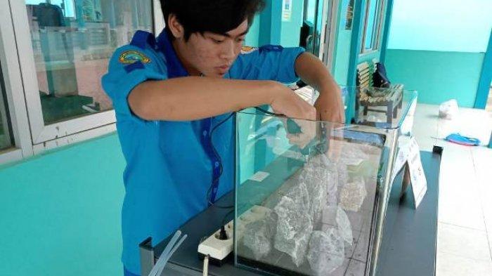 Kreatif di Masa Pandemi, Siswa SMKN 1 Bawang Banjarnegara Produksi Aquascape dan Bisnis Ikan Cupang