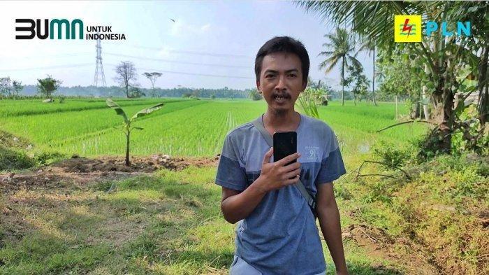 Program Electrifying Agriculture Bentuk Dukungan PLN Bagi Pelaku Usaha Sektor Agraria