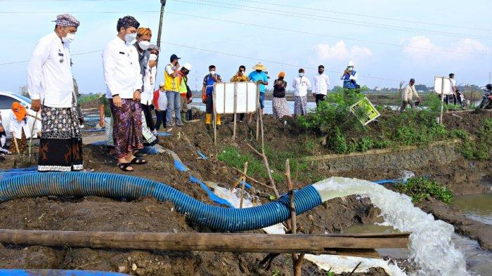 Bantu Petani di Kaliwungu Kudus Keringkan Lahan, Hartopo Kerahkan 20 Pompa Air