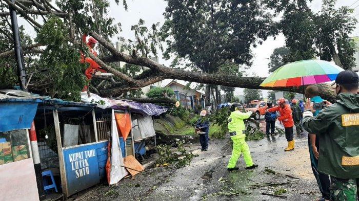 Ngerinya Puting Beliung Temanggung, Mudah Tumbangkan Pohon Besar, Atap Rumah Porakporanda
