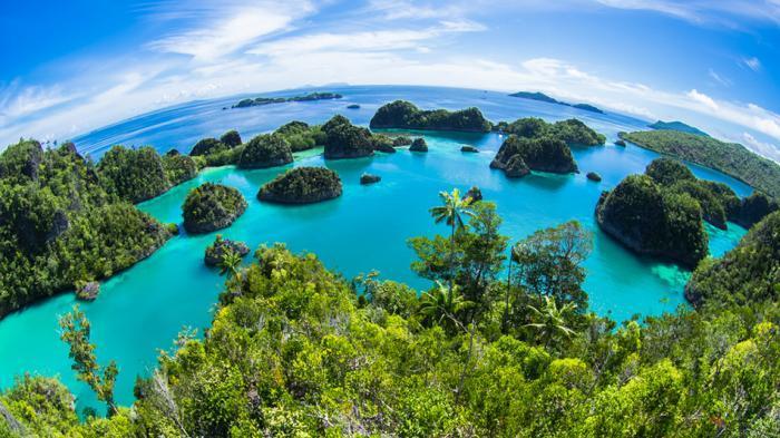 Inilah 10 Lokasi Menyelam Terbaik di Indonesia Selain Bali hingga Lombok