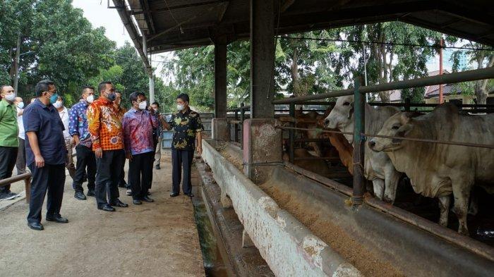 Pemkab Blora Bakal Jalin Kerja Sama dengan BUMD DKI Jakarta di Bidang Peternakan