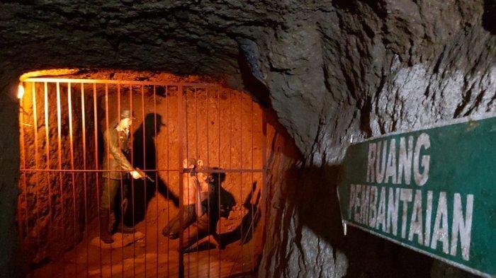 Cerita Goa Jepang di Perkebunan Teh Kaligua Brebes, Sejarawan: Sejarahnya Sangat Penting