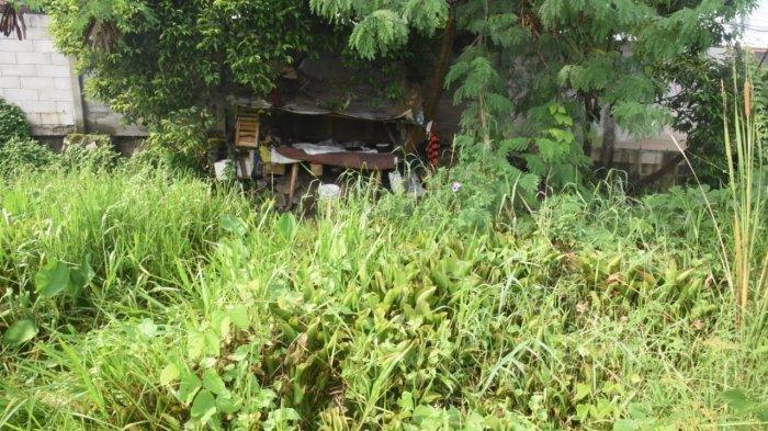 Misteri Bocah Hilang saat Main di Semak-semak, Jacky Chan Ikut Mencari, Sudah Seminggu Belum Ketemu