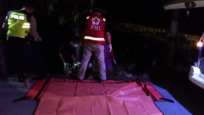 Kecelakaan Tunggal Menimpa Warga Celep, Kedawung Sragen, Pengendara Tewas Tabrak Pohon