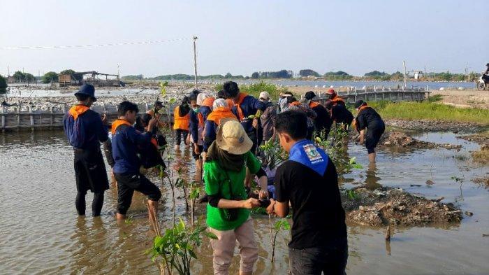 Tanam 1.000 Magrove dan Merawatnya Upaya Generasi Peduli Iklim Cegah Pesisir Semarang