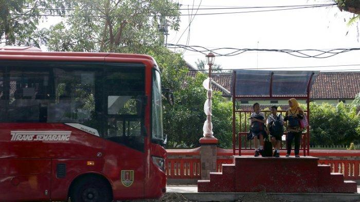 HOTLINE : Mohon Bus Trans Masuk Plamongan Indah
