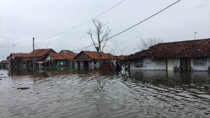 Permukaan Tanah di Pekalongan Turun Hampir Setengah Meter Tiap Tahun, Banjir Rob Jadi Momok