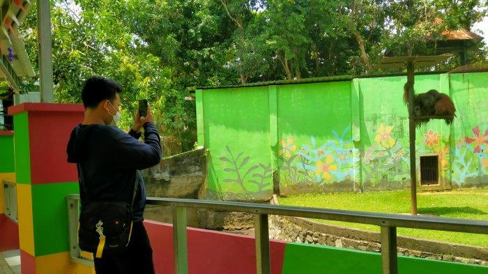 Semarang Zoo Masih Sepi Pengunjung