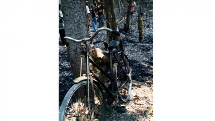 BREAKING NEWS: Warga Klaten Tewas Saat Padamkan Kebakaran di Kebun Miliknya