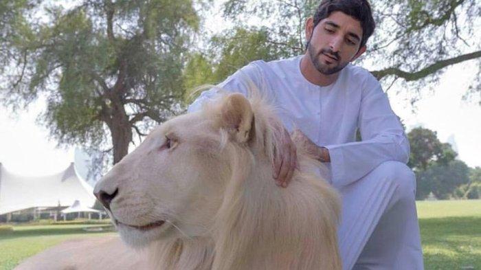 Pelihara Macan dan Singa di Rumah Simbol Kekayaan di Dubai