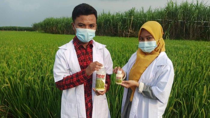 Dua Pelajar SMK Cordova Pati Ciptakan Pestisida Ramah Lingkungan Berbahan Rimpang Dringo