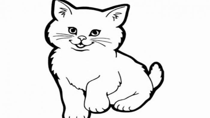 Arti Mimpi Kucing Hitam, Ada Beberapa Penafsiran yang Berhasil Dikumpulkan