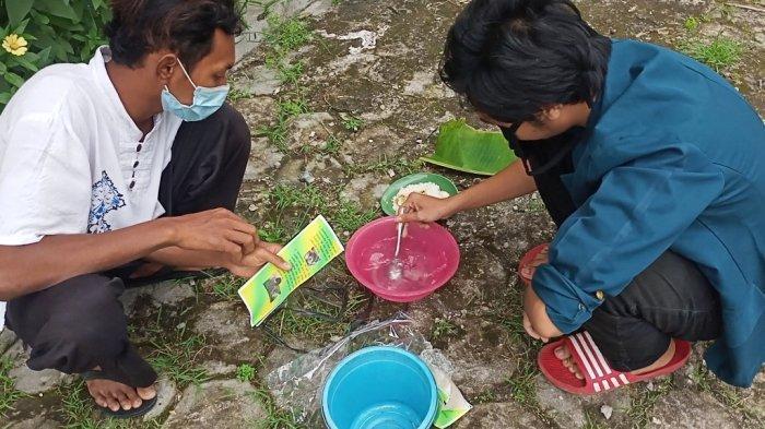 Kreatif, Nasi Basi Diolah Jadi Pupuk Organik oleh Mahasiswa KKN Undip Semarang