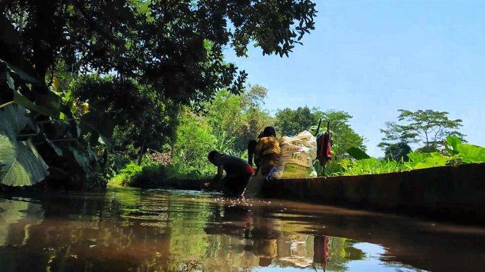 Beda Hulu Beda Hilir, Riwayat Sungai Kupang Batang yang Hidupi Para Petani