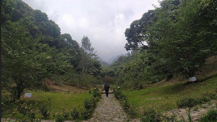 Taman Sakral Tawangmangu Karanganyar, Tawarkan Indahnya Bunga Sakura dan Panorama Gunung Lawu