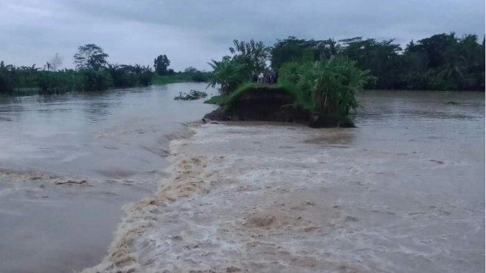 Tanggul sungai Telomoyo jebol, banjir menggenangi sebagian wilayah Des Madurejo Kecamatan Puring dan desa di sekitarnya.