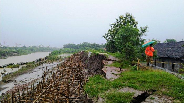 Tanggul Sungai Bodri Kendal Terancam Jebol, 50 Meter Ambles Cuma Sisakan Gronjong