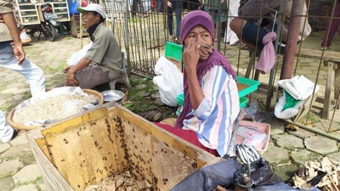 Kisah Tarti Penjual Jangkrik di Pasar Hewan Purbalingga Bertahan di Kala PPKM