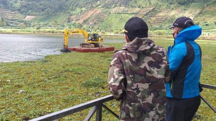 Enceng Gondok yang Menutup Telaga Merdada Dieng Disingkirkan, Siap Jadi Wisata Bebas Sampah