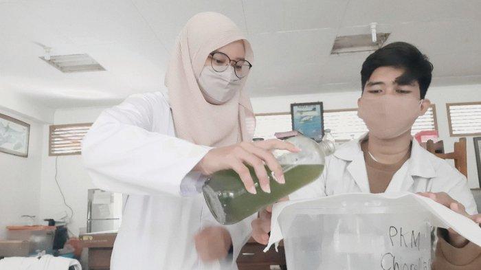 Effervescent Chlorella Vulgaris, Solusi Imunostimulan Karya Mahasiswa Biologi Unsoed