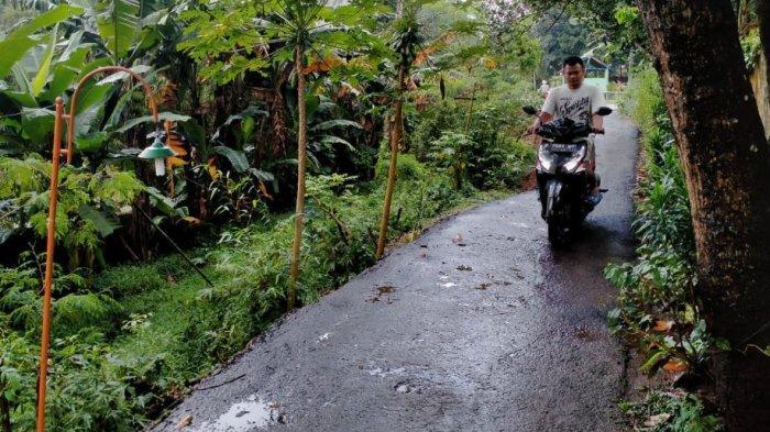 BPBD dan DPU-Taru Kabupaten Pekalongan saat meninjau jalan longsor.