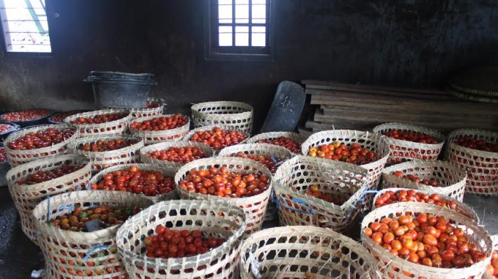 Harga Cabai dan Tomat di Kota Pekalongan Melambung Tinggi