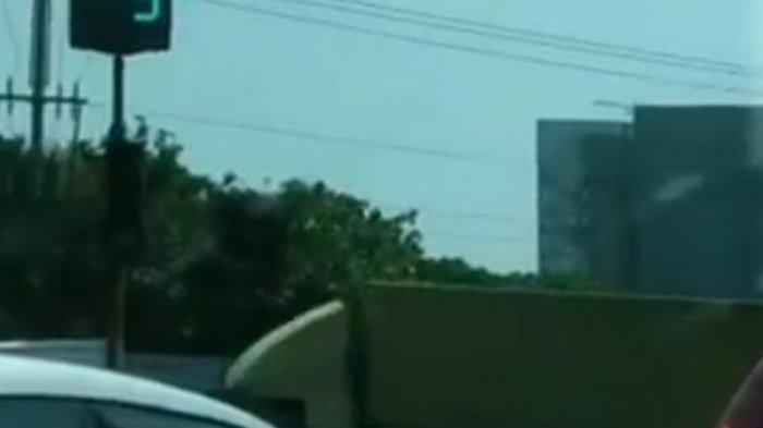 HOTLINE Semarang : Ranting Pohon Ganggu Traffic Light Jalan Widoharjo