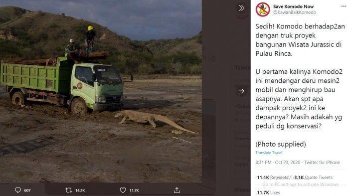 Sebuah truk yang membawa tiang pancang berhadapan dengan komodo yang diketahui berlokasi di Pulau Rinca, Taman Nasional Komodo, Labuan Bajo, Nusa Tenggara Timur (NTT) (Twitter/KawanBaikKomodo)