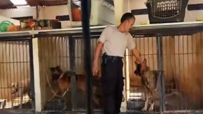 Yuk Kenalan Dengan Satwa-Satwa di Sabhara Polrestabes Semarang (Video)