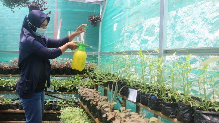 Tinggal di Dekat Proyek Sistem Penyedia Air Minum, Warga Mijen Dapat Pelatihan Urban Farming