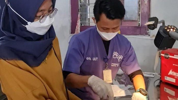 DKPPP Kota Tegal Adakan Vaksin Rabies Gratis Selama 4 Hari