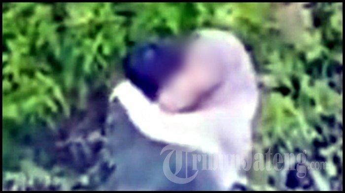 Cekrek! CCTV Rekam Muda Mudi Ciuman ala French Kiss di Kebun Teh Kemuning Karanganyar