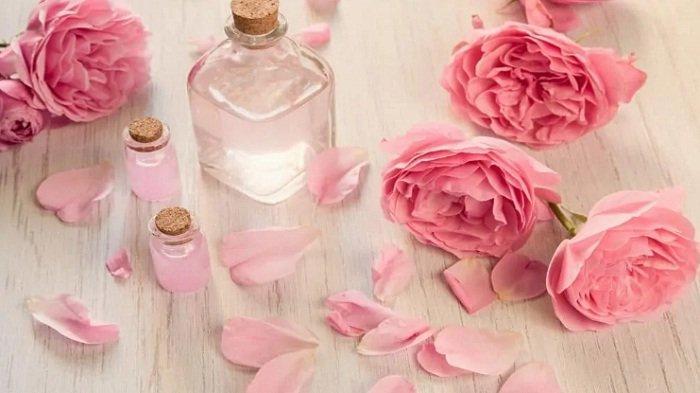 Wajib Dicoba, Air Mawar Segudang Manfaat untuk Kecantikan tak Hanya Bikin Glowing