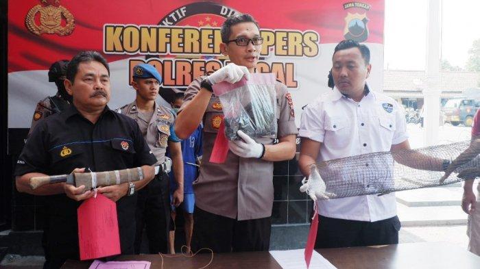 Dua Pemburu Landak yang Sebabkan Kebakaran Hutan Clirit Tegal Terancam 6 Tahun Penjara