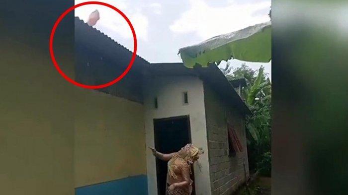 Viral Pengantin Wanita Lempar Celana Dalam ke Genteng, Katanya Bisa Tolak Hujan
