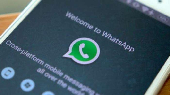 Mute Video Fitur Baru WA WhatsApp, Buat Status atau Kirim Video Tanpa Suara Bising