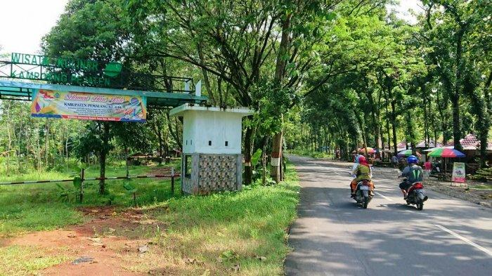 Sejumlah lapak pedagang di objek wisata Kampoeng Pajetan, di Desa Jatiroyom, Kecamatan Bodeh, Pemalang, nampak ditinggalkan pedagang, Senin (15/3/2021).