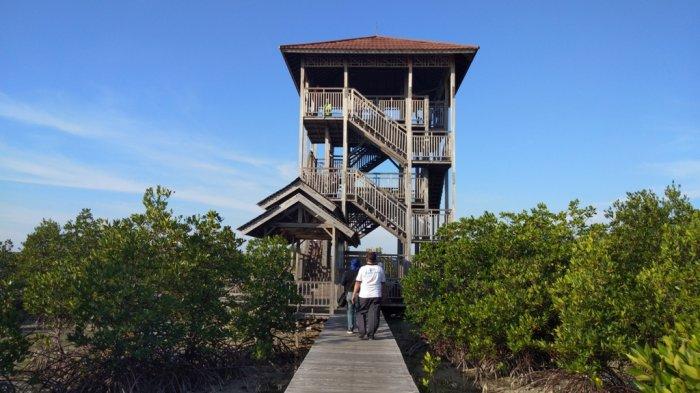Keunikan Mangrove di Pulau Karimunjawa Menjadi Rujukan Penelitian Ilmiah