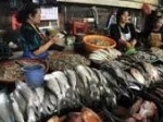 Pasar-Ikan-Balekambang.jpg