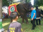 ada-gajah-di-kirab-budaya-hut-kabupaten-bateng_20180408_155327.jpg