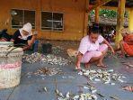 aktifitas-penyortiran-ikan-di-tpi-roban-timur-kecamatan-subah-kabupaten-bat.jpg